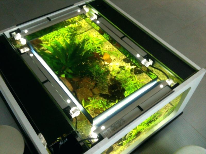 Carrelage imitation parquet gris fonc maison et mobilier - Table basse aquarium jardiland ...