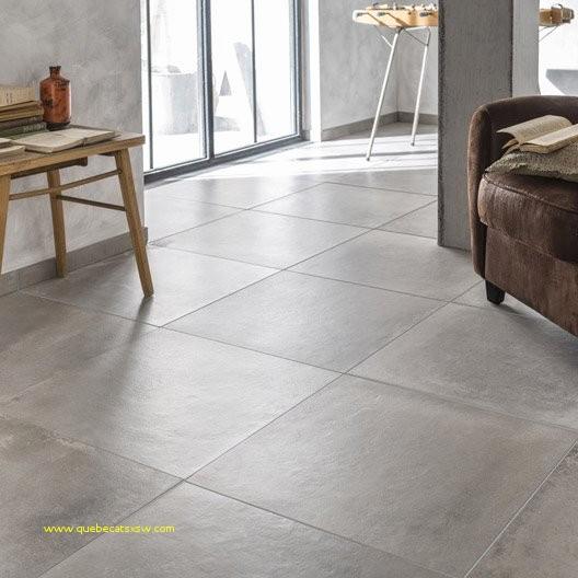 carrelage exterieur brico depot dax. Black Bedroom Furniture Sets. Home Design Ideas